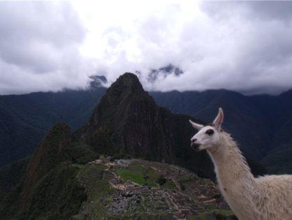 Il Perù dal deserto alle Ande
